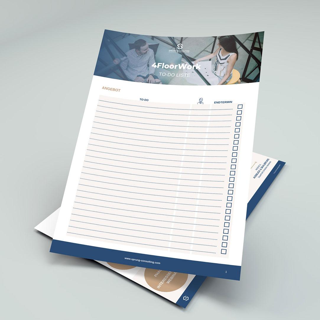 Visuelle Projektdarstellung: Worksheets für Sprung Consulting GmbH